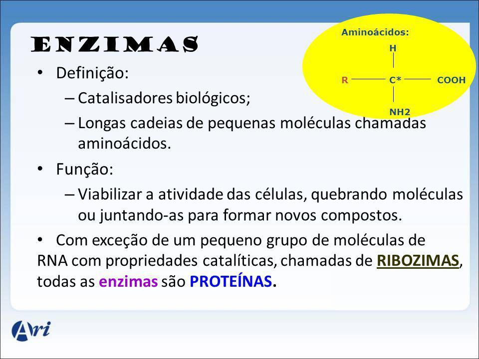 ENZIMAS Definição: Função: Catalisadores biológicos;