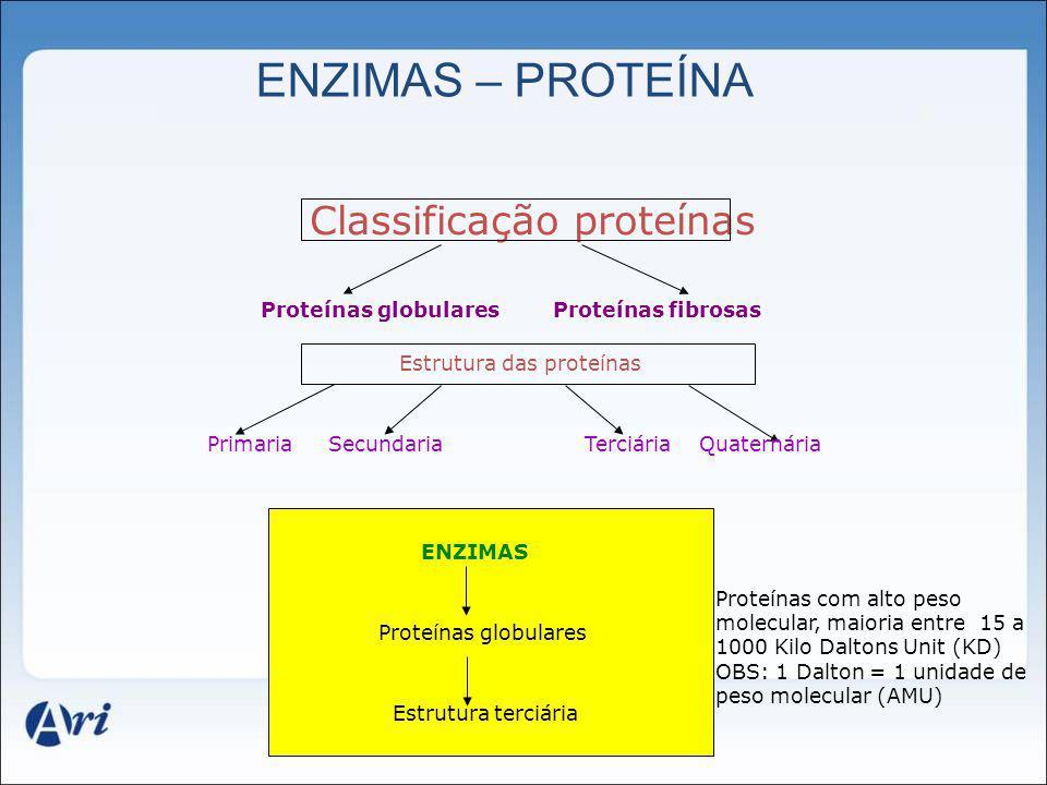 ENZIMAS – PROTEÍNA Classificação proteínas