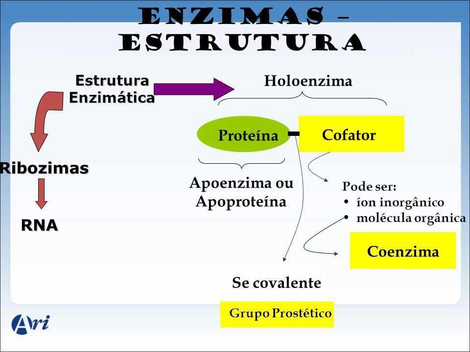 ENZIMAS – ESTRUTURA Holoenzima Proteína Cofator Ribozimas Apoenzima ou