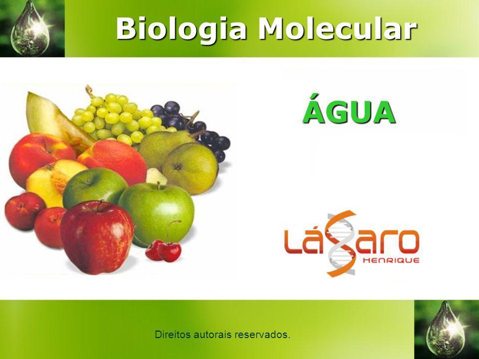Biologia Molecular ÁGUA