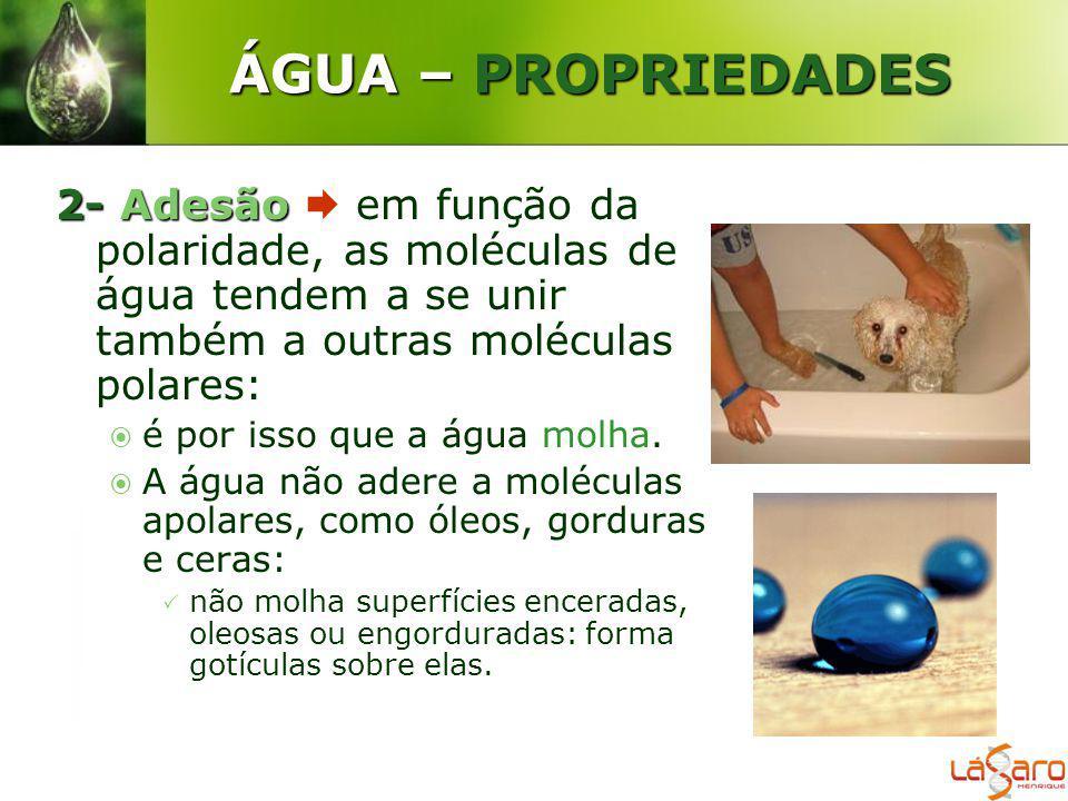 ÁGUA – PROPRIEDADES 2- Adesão  em função da polaridade, as moléculas de água tendem a se unir também a outras moléculas polares: