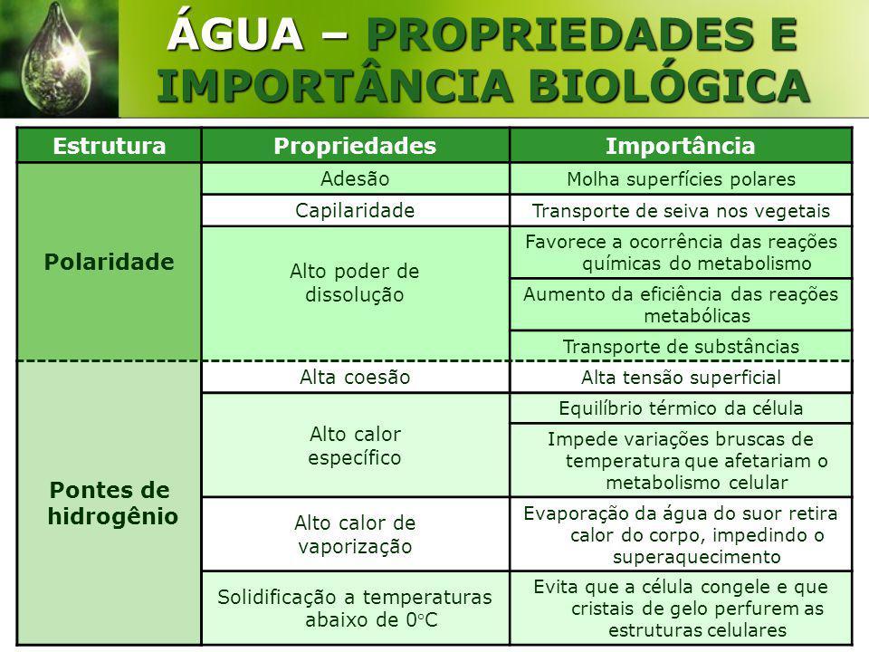 ÁGUA – PROPRIEDADES E IMPORTÂNCIA BIOLÓGICA