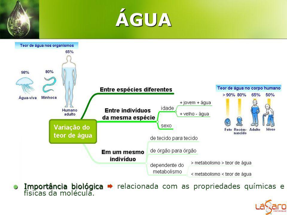 ÁGUA Importância biológica  relacionada com as propriedades químicas e físicas da molécula.