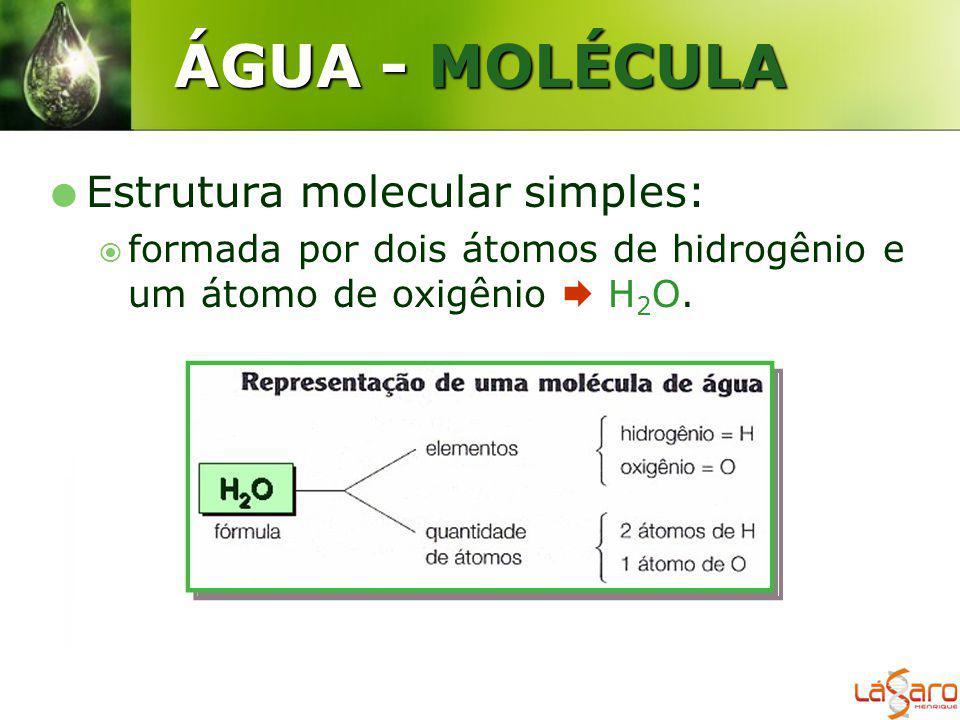 ÁGUA - MOLÉCULA Estrutura molecular simples: