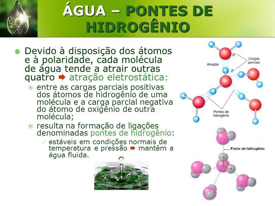 ÁGUA – PONTES DE HIDROGÊNIO