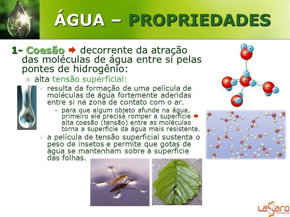 ÁGUA – PROPRIEDADES 1- Coesão  decorrente da atração das moléculas de água entre si pelas pontes de hidrogênio: