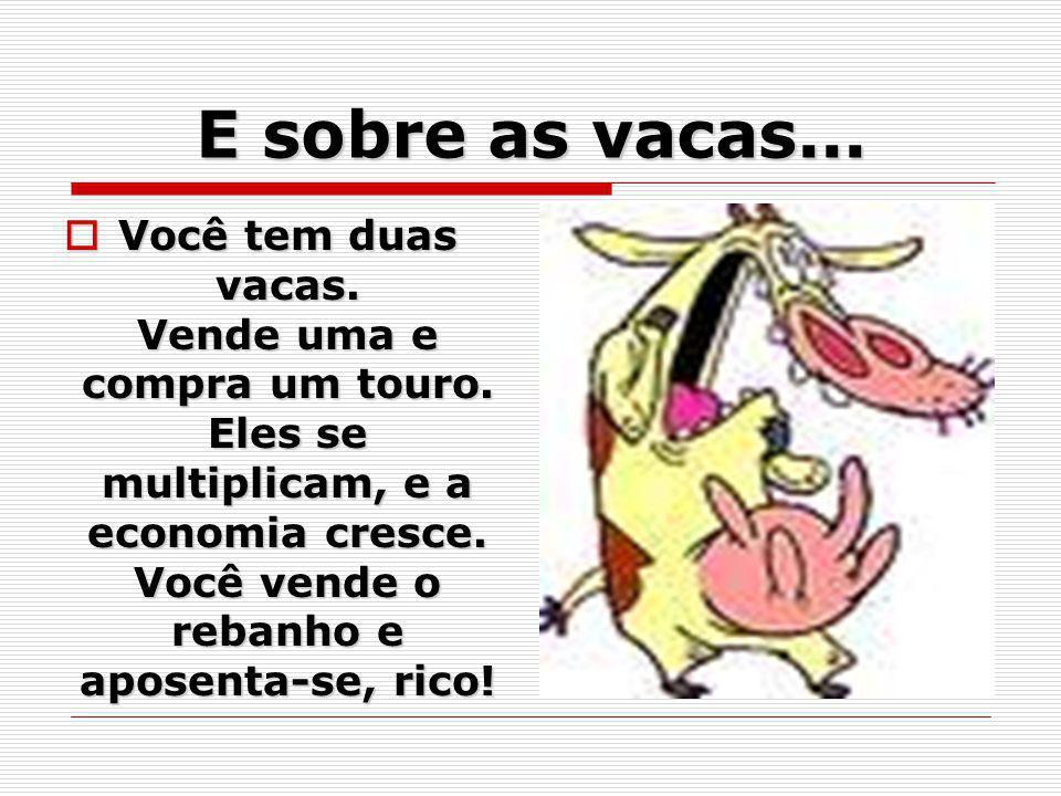 E sobre as vacas...