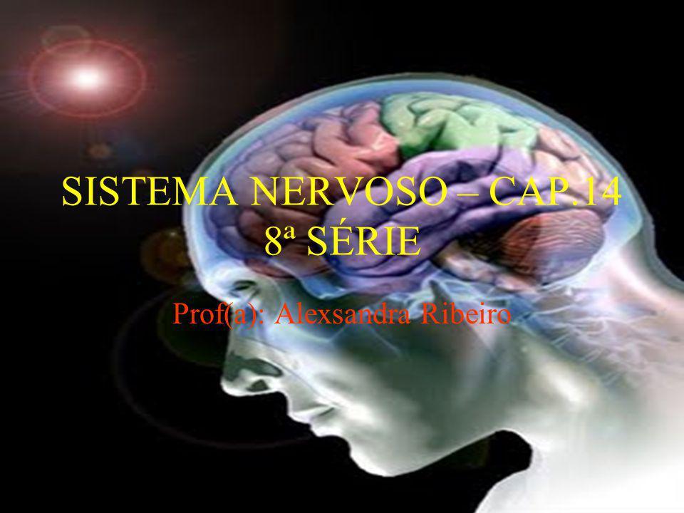 SISTEMA NERVOSO – CAP.14 8ª SÉRIE