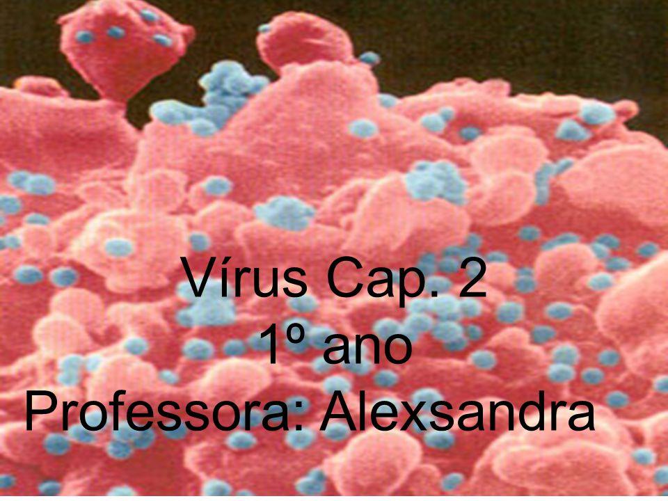 Vírus, um grupo a parte. Vírus Cap. 2 1º ano Professora: Alexsandra