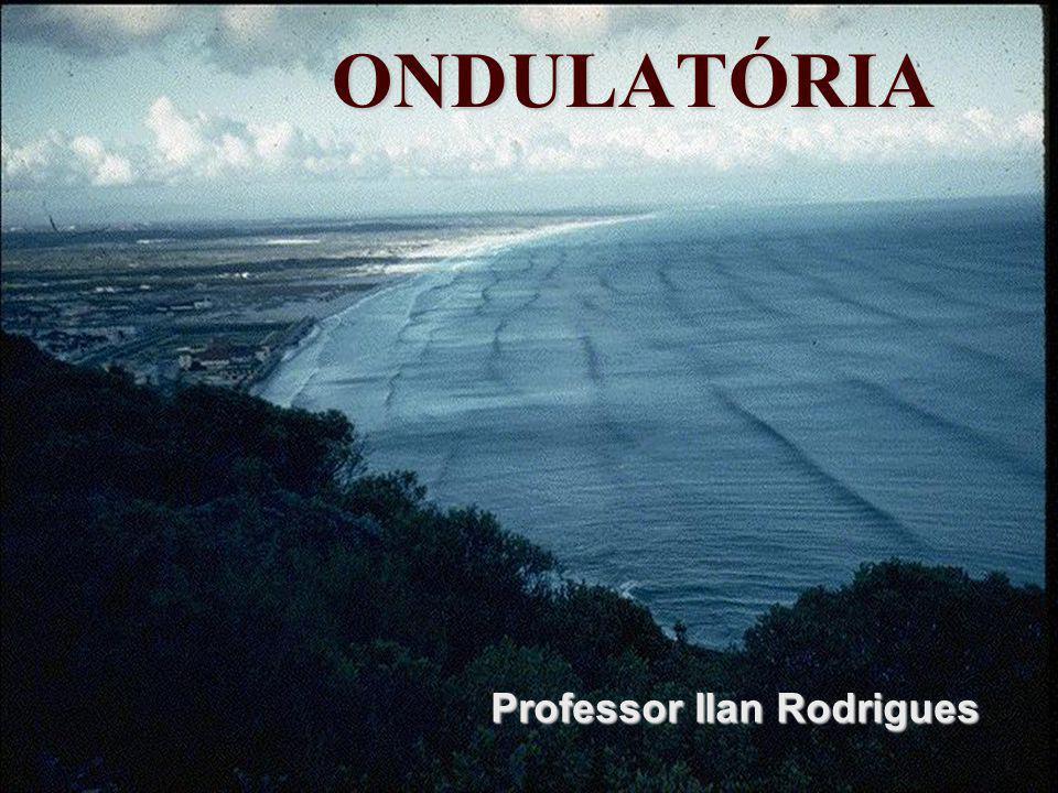 Professor Ilan Rodrigues