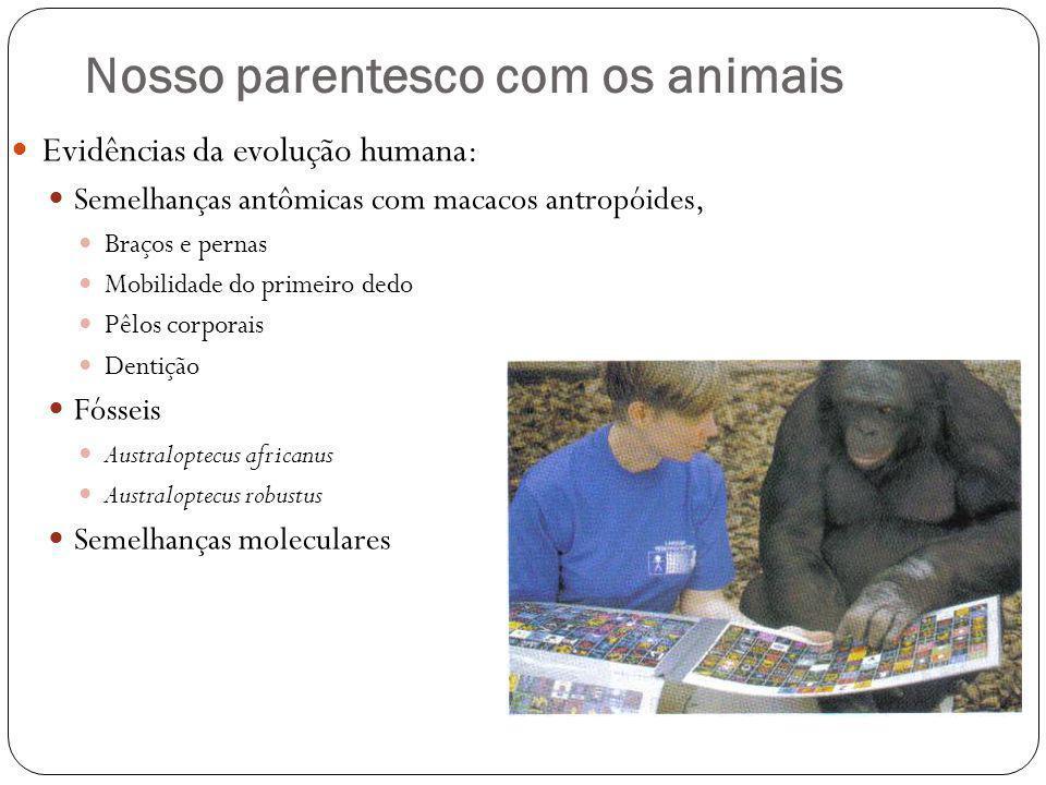 Nosso parentesco com os animais