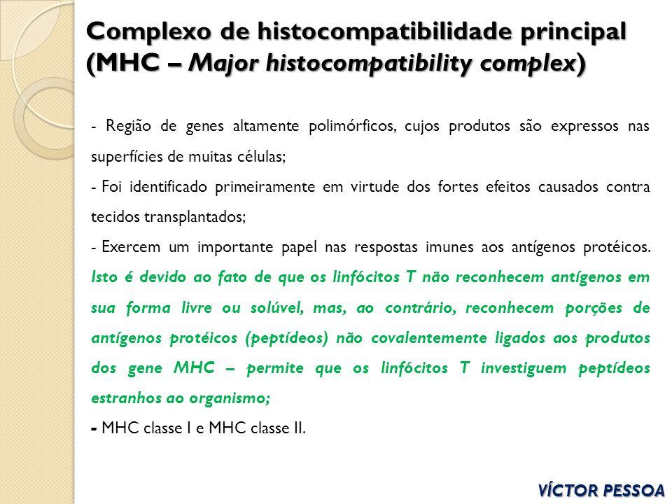 Complexo de histocompatibilidade principal (MHC – Major histocompatibility complex)