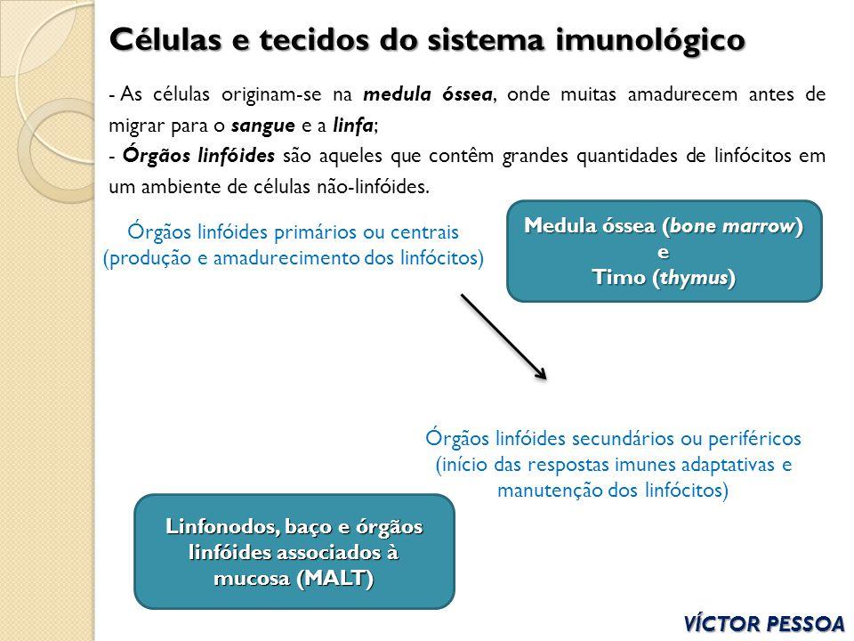 Células e tecidos do sistema imunológico