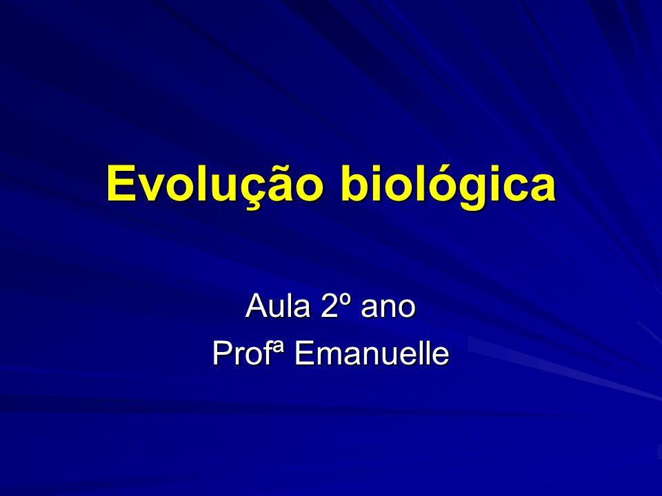 Aula 2º ano Profª Emanuelle