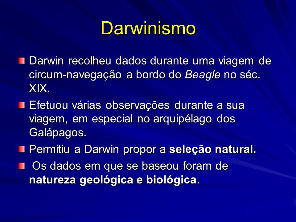 Darwinismo Darwin recolheu dados durante uma viagem de circum-navegação a bordo do Beagle no séc. XIX.