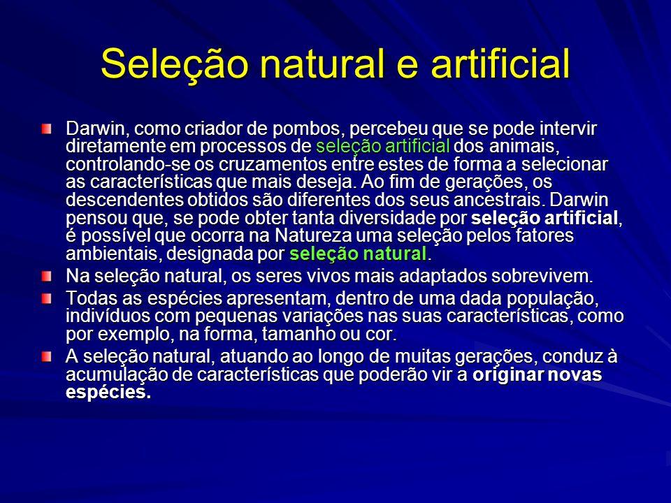 Seleção natural e artificial