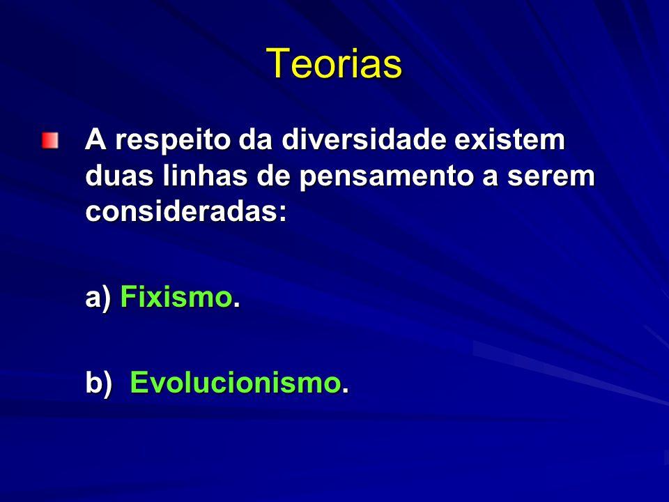 Teorias A respeito da diversidade existem duas linhas de pensamento a serem consideradas: a) Fixismo.