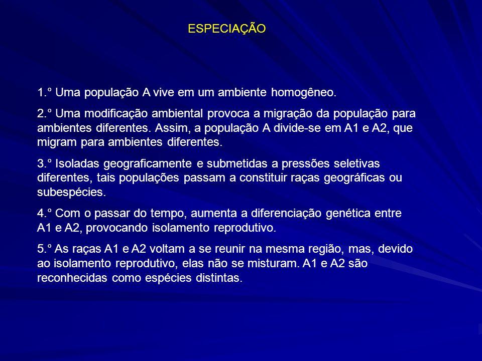 ESPECIAÇÃO 1.° Uma população A vive em um ambiente homogêneo.
