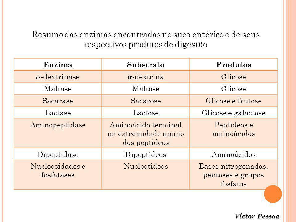 Resumo das enzimas encontradas no suco entérico e de seus respectivos produtos de digestão