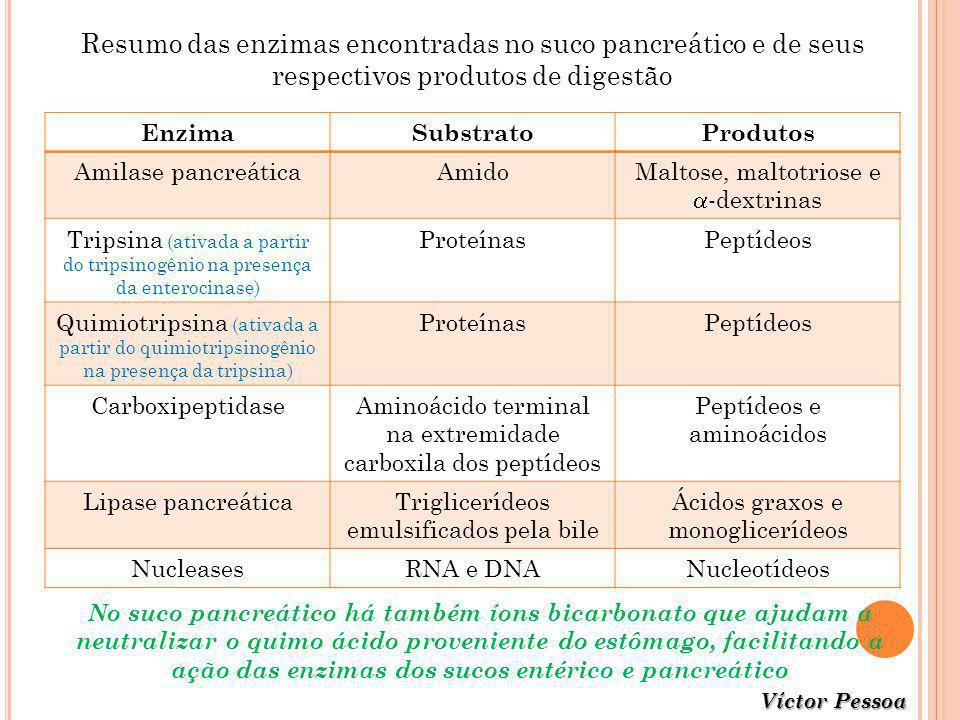 Resumo das enzimas encontradas no suco pancreático e de seus respectivos produtos de digestão