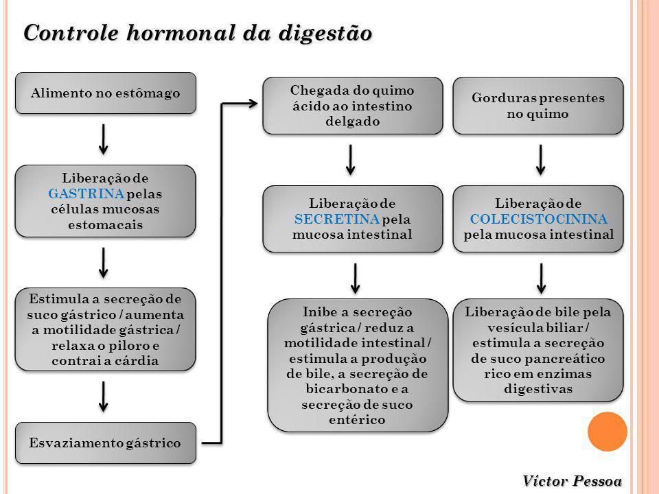 Controle hormonal da digestão