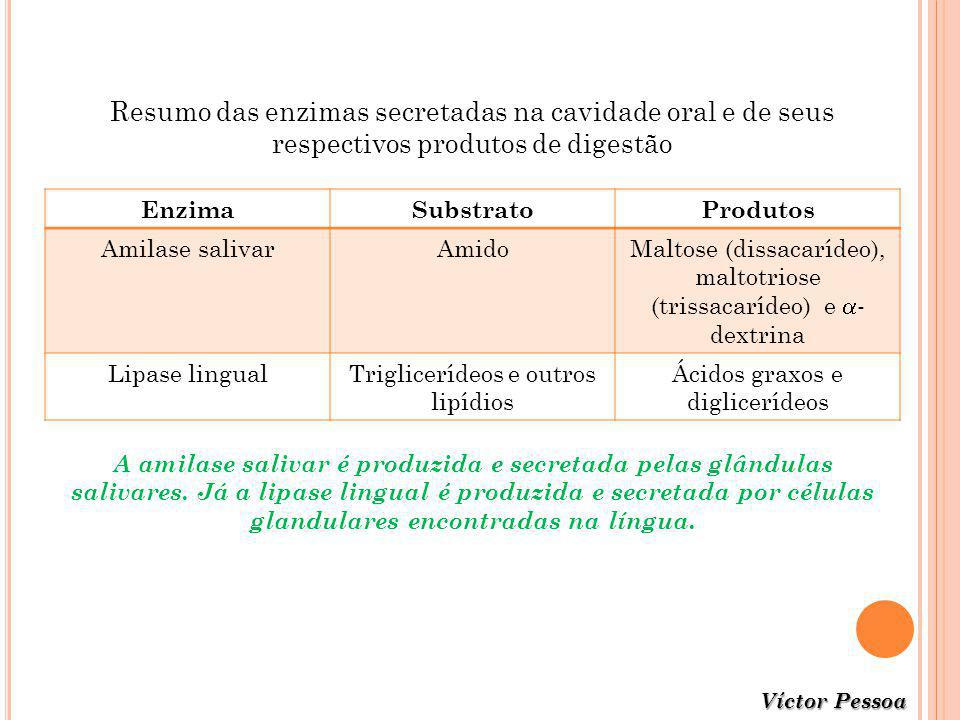 Resumo das enzimas secretadas na cavidade oral e de seus respectivos produtos de digestão