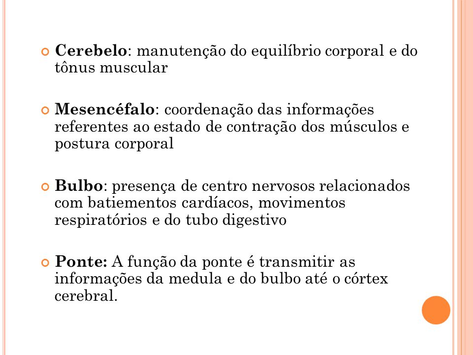 Cerebelo: manutenção do equilíbrio corporal e do tônus muscular