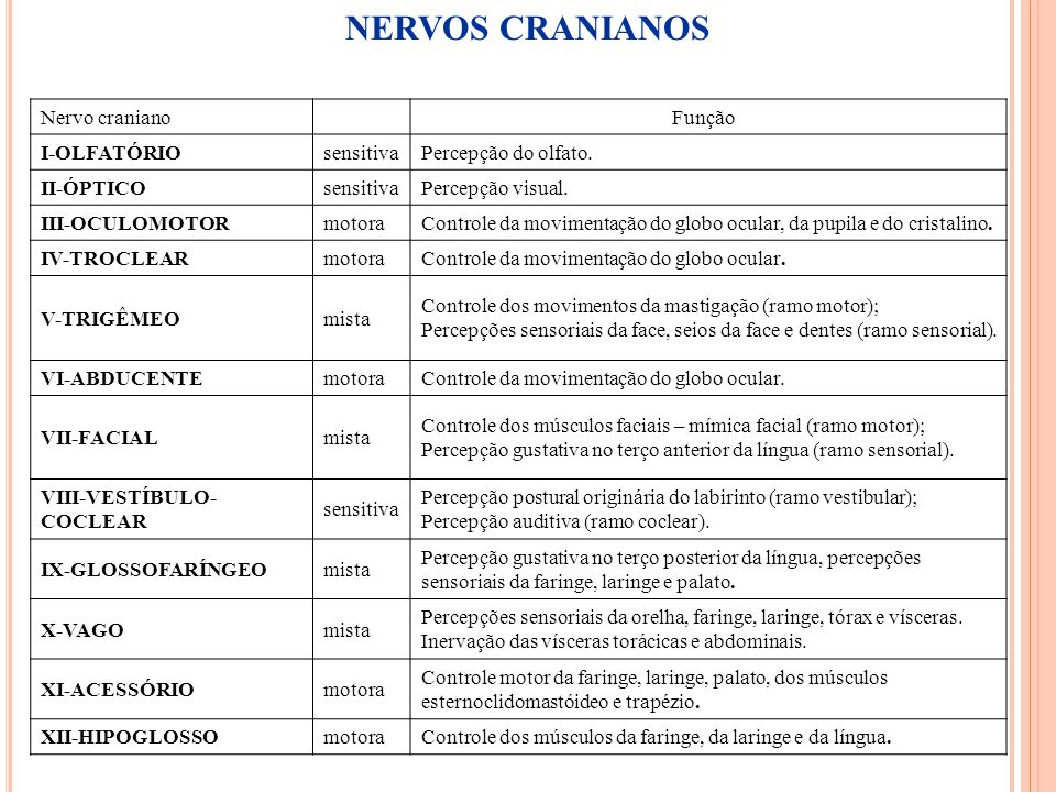 NERVOS CRANIANOS Nervo craniano Função I-OLFATÓRIO sensitiva