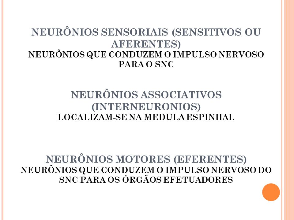 NEURÔNIOS SENSORIAIS (SENSITIVOS OU AFERENTES)