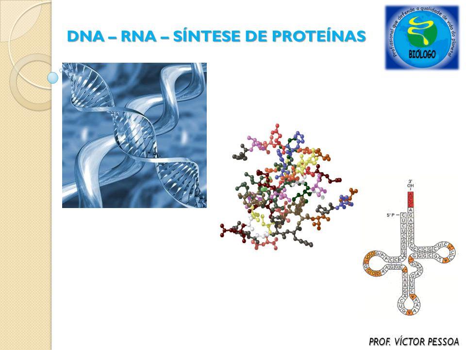 DNA – RNA – SÍNTESE DE PROTEÍNAS