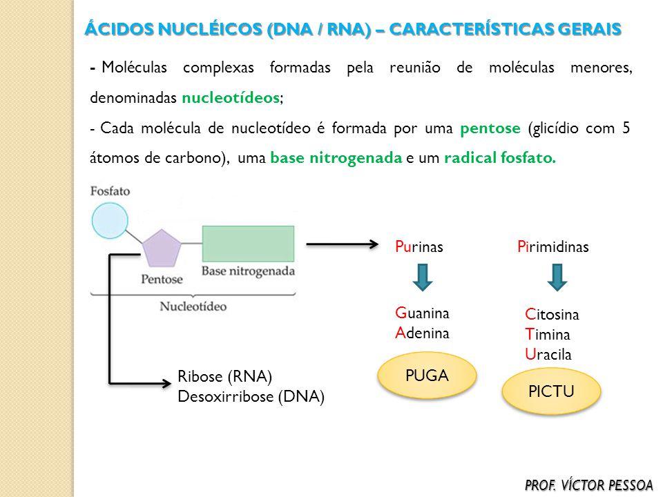ÁCIDOS NUCLÉICOS (DNA / RNA) – CARACTERÍSTICAS GERAIS