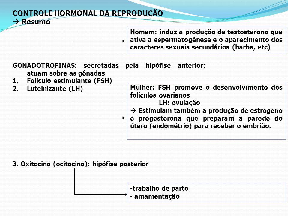 CONTROLE HORMONAL DA REPRODUÇÃO  Resumo