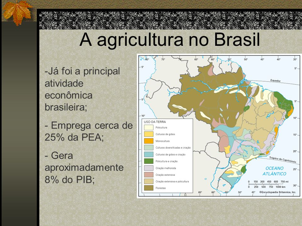 A agricultura no Brasil
