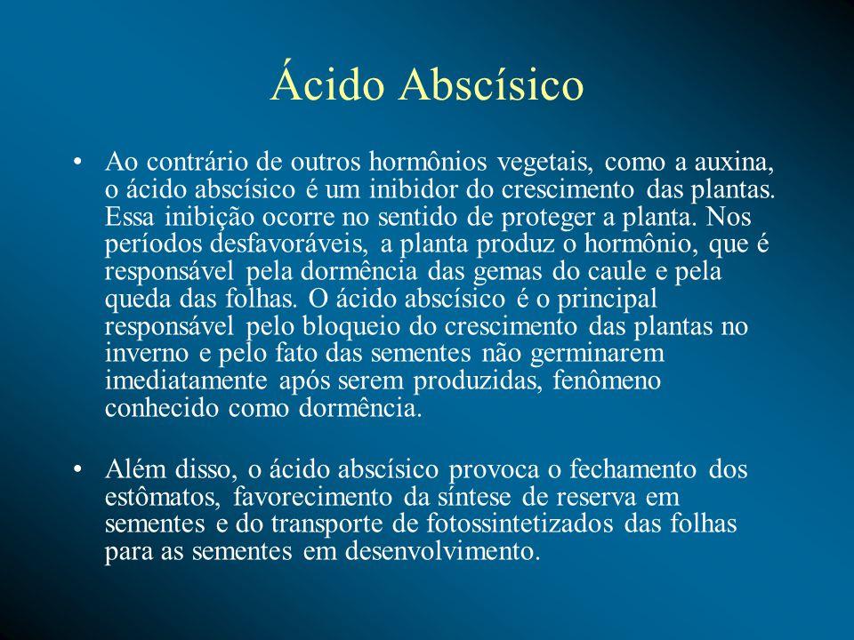 Ácido Abscísico