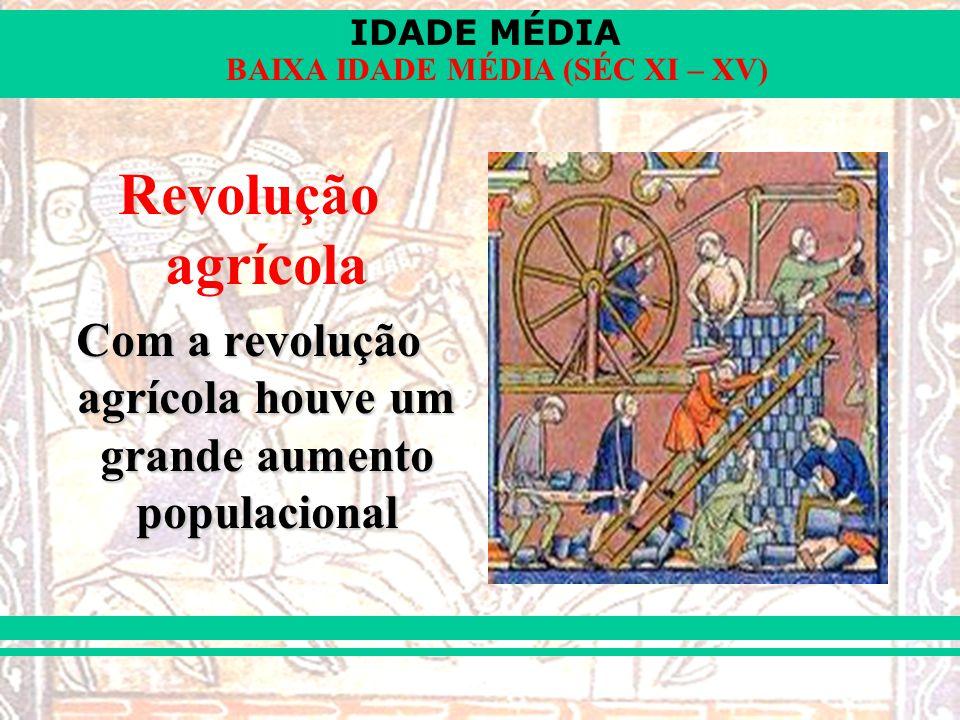 Com a revolução agrícola houve um grande aumento populacional