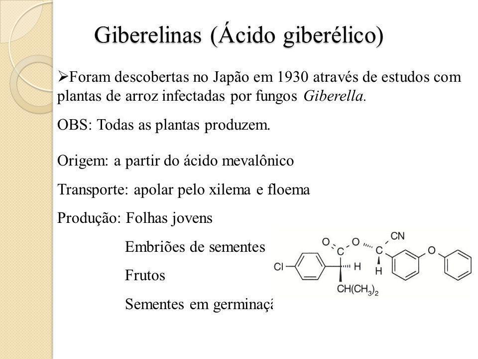 Giberelinas (Ácido giberélico)