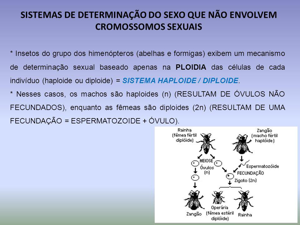 SISTEMAS DE DETERMINAÇÃO DO SEXO QUE NÃO ENVOLVEM CROMOSSOMOS SEXUAIS