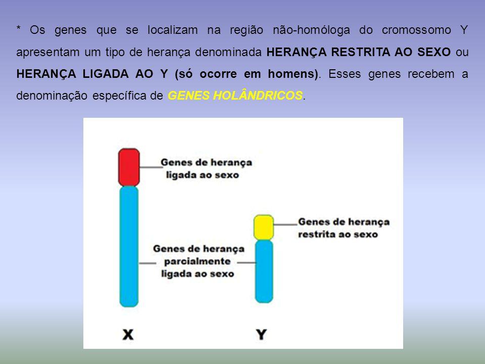 * Os genes que se localizam na região não-homóloga do cromossomo Y apresentam um tipo de herança denominada HERANÇA RESTRITA AO SEXO ou HERANÇA LIGADA AO Y (só ocorre em homens).