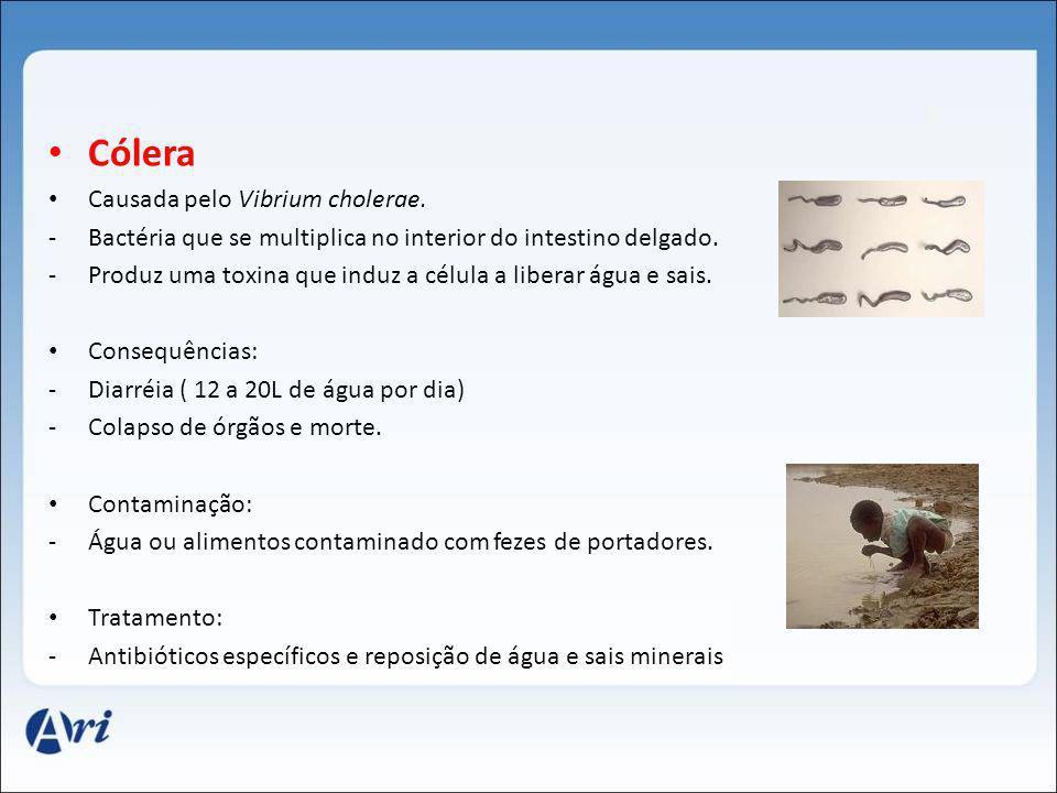 Cólera Causada pelo Vibrium cholerae.