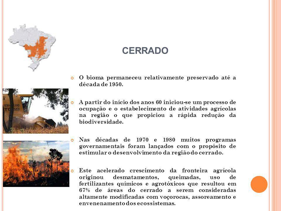 CERRADO O bioma permaneceu relativamente preservado até a década de 1950.