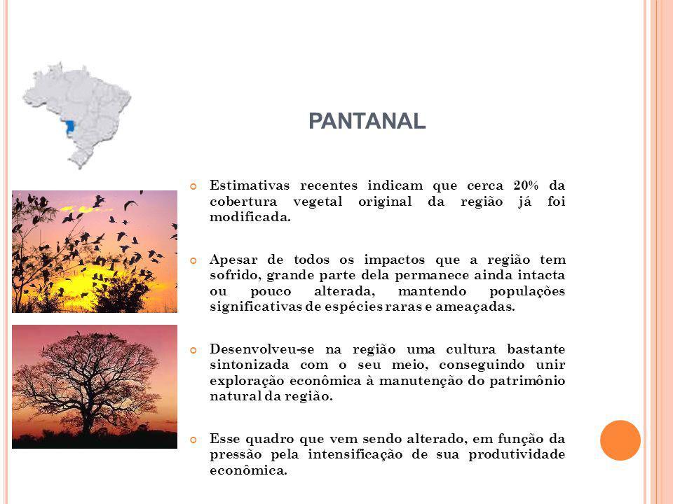 PANTANAL Estimativas recentes indicam que cerca 20% da cobertura vegetal original da região já foi modificada.