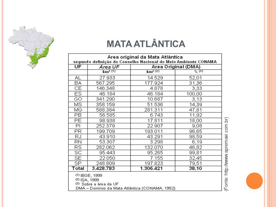 MATA ATLÂNTICA (Fonte: http://www.apremavi.com.br)
