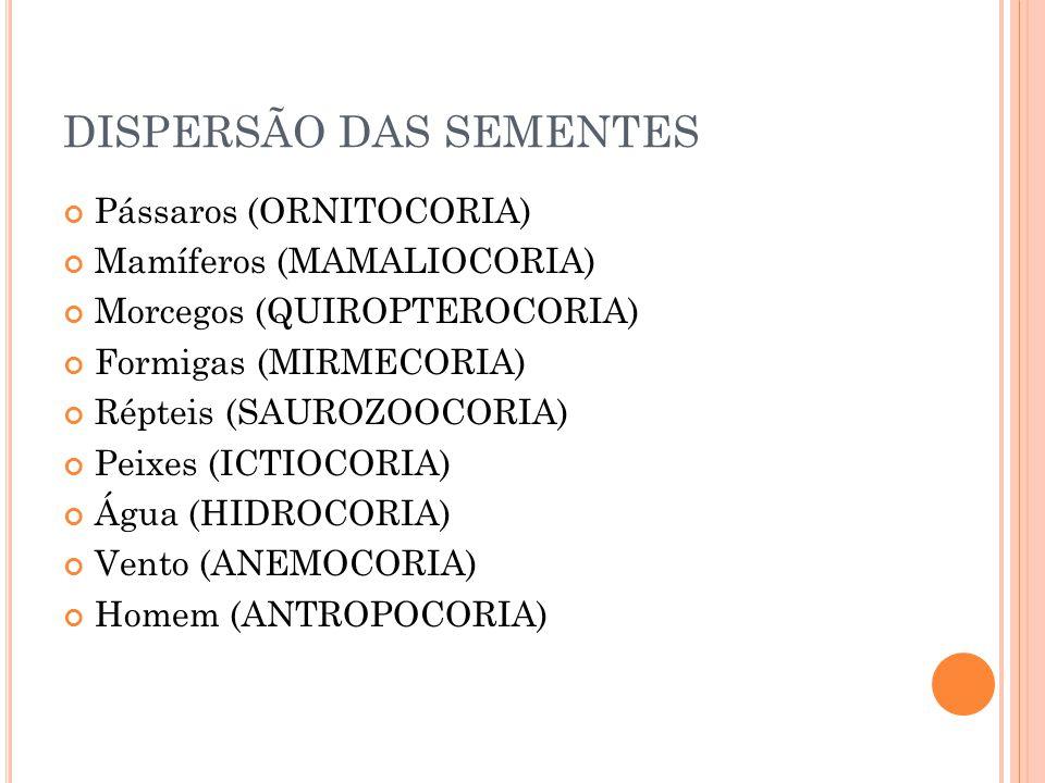 DISPERSÃO DAS SEMENTES