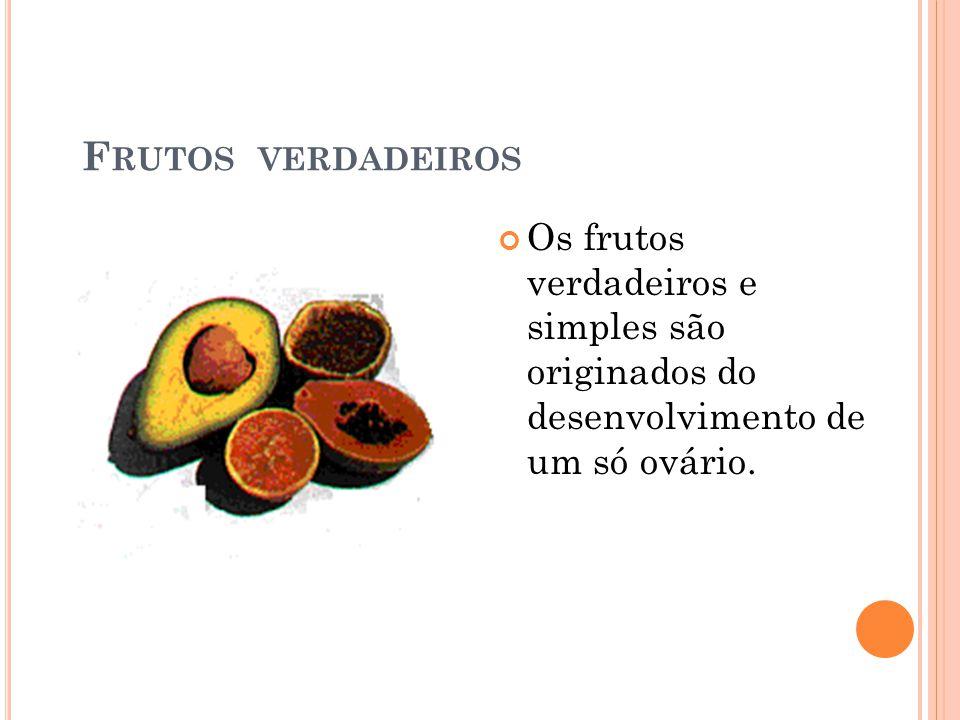 Frutos verdadeiros Os frutos verdadeiros e simples são originados do desenvolvimento de um só ovário.