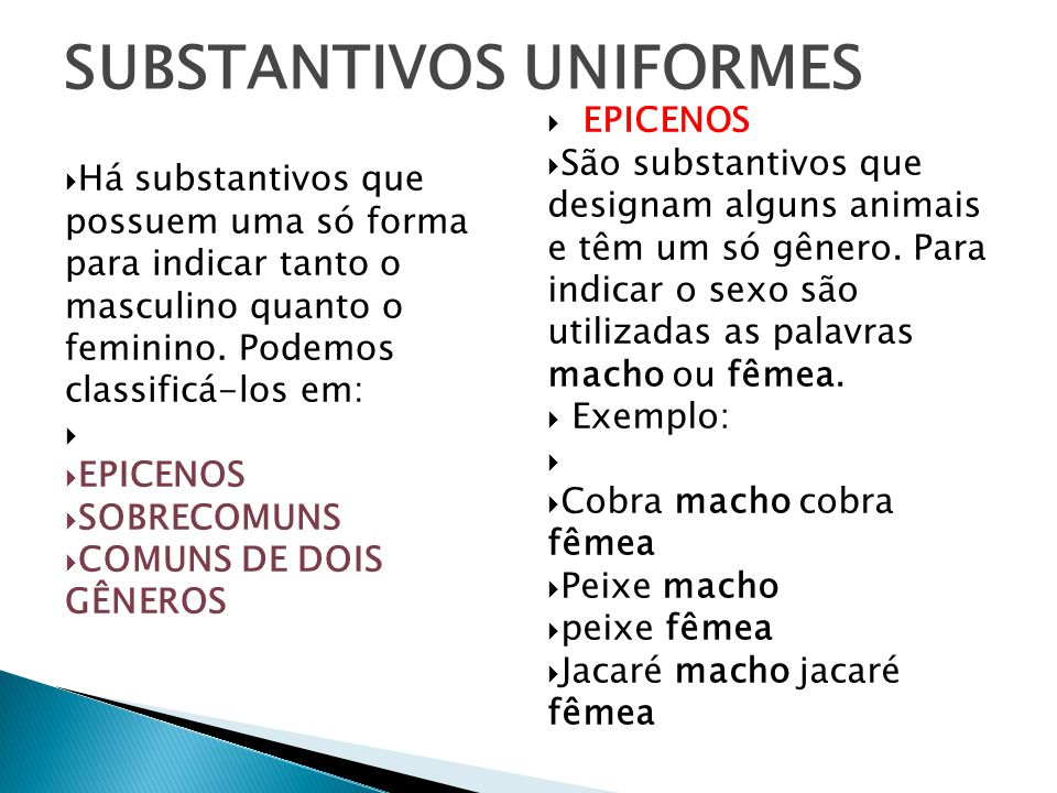 SUBSTANTIVOS UNIFORMES