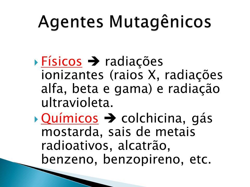 Físicos  radiações ionizantes (raios X, radiações alfa, beta e gama) e radiação ultravioleta.