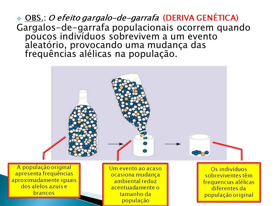 OBS.: O efeito gargalo-de-garrafa (DERIVA GENÉTICA)