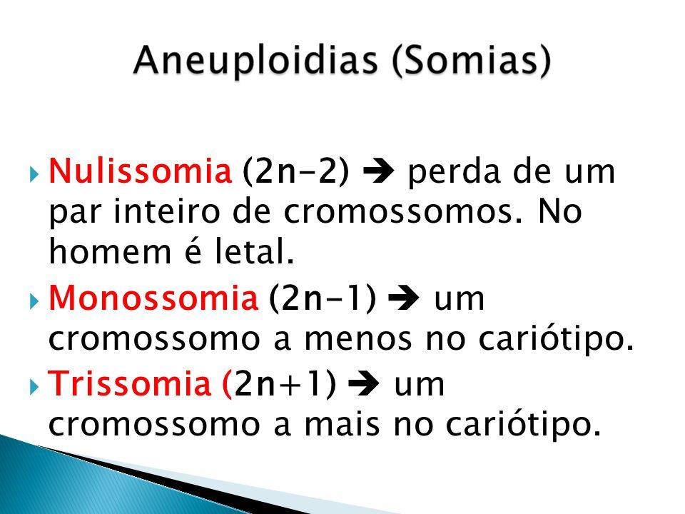 Nulissomia (2n-2)  perda de um par inteiro de cromossomos