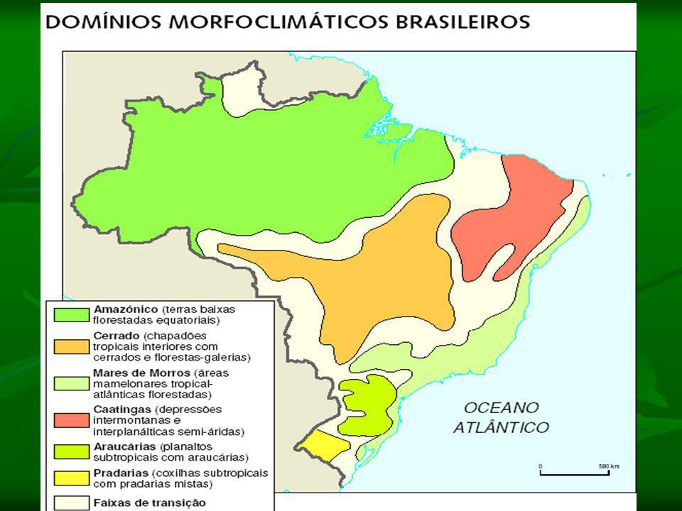 IV- Domínios Naturais Os domínios morfoclimáticos: Domínio Amazônico: