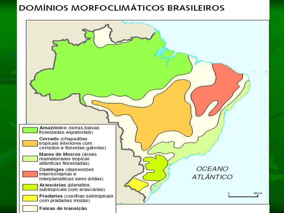 Domínio do Cerrado: Clima: Tropical (duas estações bem definidas)